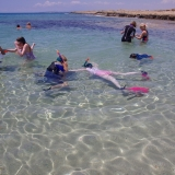 Picture of pupils snorkelling