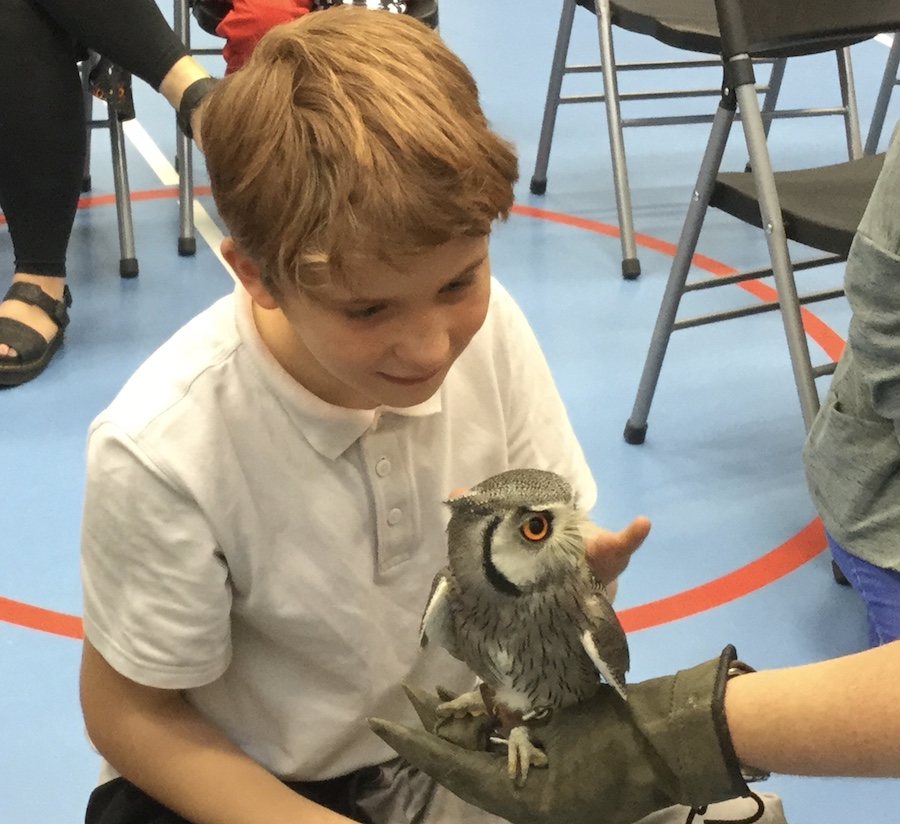 Picture of a pupils holding an owl during Hallow Green day