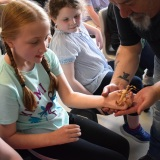 Photograph of pupils holding and petting owls and snakes.