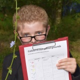 Picture of a pupil recording the colour of a flower they had found