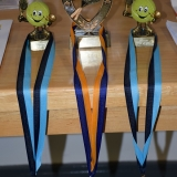 Picture of tennis trophies and medals