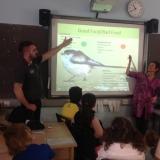 Ulster Wildlife talk to pupils