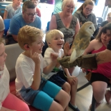 World of Owls show pupils a barn owl