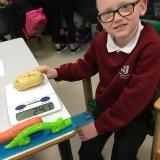 Photograph of a pupil weighing a potato